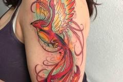 inferno-tattoo-barcelona-neotradi-alex-baens-grande-brazo-pajaro