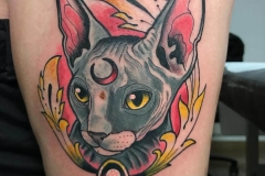 inferno-tattoo-barcelona-neotradi-alex-baens-mediano-pierna-gato-persa-anime
