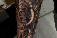 realismo-blanco-y-negro-annie-blesok-grande-brazo-antebrazo-retrato-elefante-