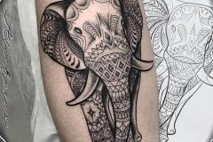 elefante-pierna-gemelo-dot-work-blackwork-alex-baens-mediano