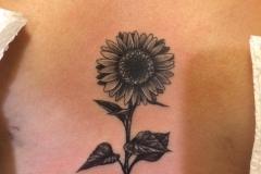 inferno-tattoo-barcelona-marcelo-entattoo-girasol-espalda-mediano-ilustracion