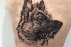tatuaje-pastor-aleman-inferno-tattoo-barcelona-hector-mateos