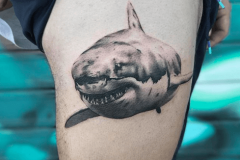 tiburon-tattoo-negro-gris-hector-mateos-inferno-tattoo-barcelona
