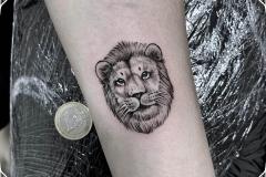 cara-leon-tattoo-ilustracion-blackwork-pequeño-alex-baens