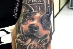 inferno-tattoo-barcelona-joel-federico-perro-realista-pitbull-negro-gris