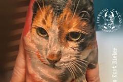 inferno-tattoo-barcelona-realismo-color-christian-kurt-bieber-mediano-mano-retrato-gato