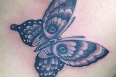 inferno-tattoo-barcelona-ilustracion-marcelo-entattoo-mediano-pecho-mariposa