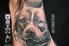 inferno-tattoo-barcelona-pitbull-pie-joel-federico