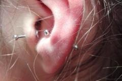 piercing-en-oreja-inferno-tattoo-barcelona-hospitalet-575x1024