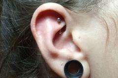 piercing-oreja-rook-anillado-barcelona-perforacion