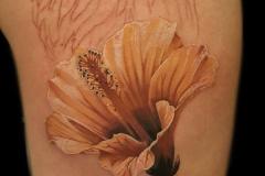 realismo-color-christian-kurt-bieber-mediano-brazo-flor-jpg-1