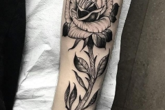 inferno-tattoo-barcelona-alex-baens-rosa-black-work-negro-gris-grande-brazo