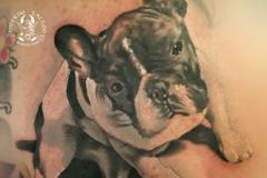 inferno-tattoo-barcelona-realismo-negro-y-gris-christian-kurt-bieber-grande-espalda-retrato-bulldog