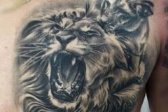 inferno-tattoo-barcelona-realismo-negro-y-gris-joel-federico-bieber-mediano-pecho-retrato-leones