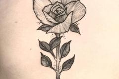 rosa-tattoo-black-work-dot-work-alex-baens-espalda-mediano