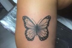 marcelo-ilustración-pequeño-brazo-mariposa-jpg