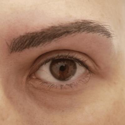 Micropigmentación cejas pelo a pelo.